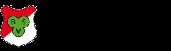 bsv_hannover_logo_250X75